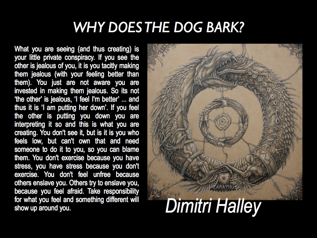 Why does the dog bark?