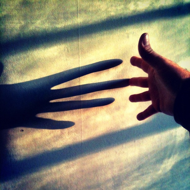 Touching the Shadow